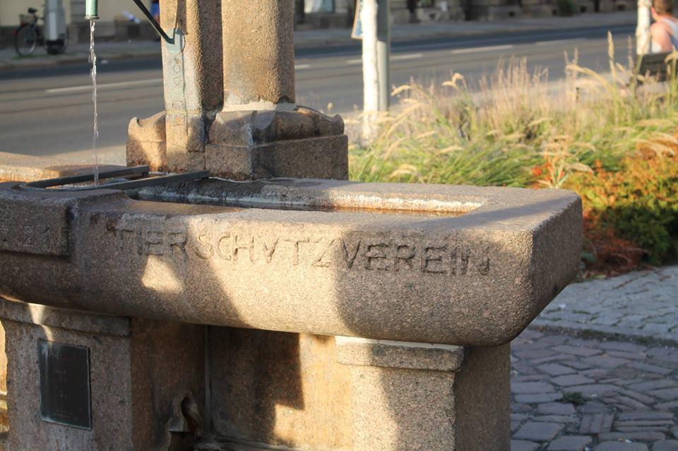 """Auf dem Bild ist ein Teil des sogenannten Pferdekopfbrunnen in Dresden zu sehen. Zu lesen ist die Aufschrift \""""Tierschutzverein\"""""""
